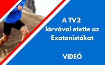 tv2 lárvával etette az exatlonistákat
